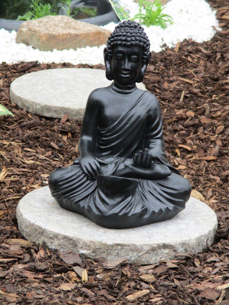 בודהה יושב בתנוחת מדיטציה וצ'י קונג